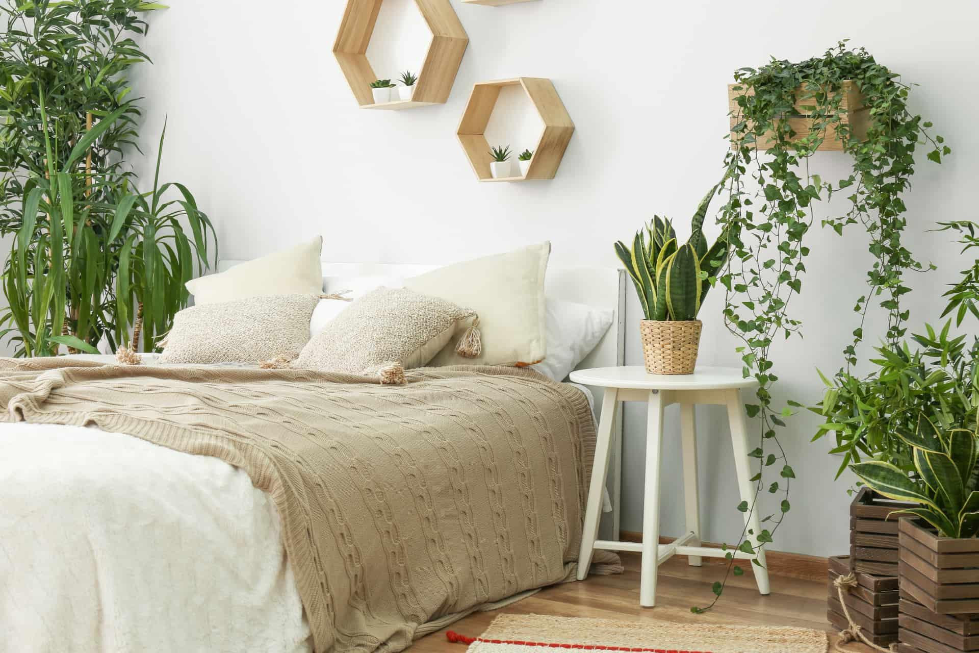 conscious bedroom